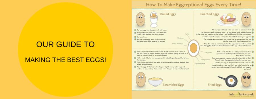 Eggs infographic