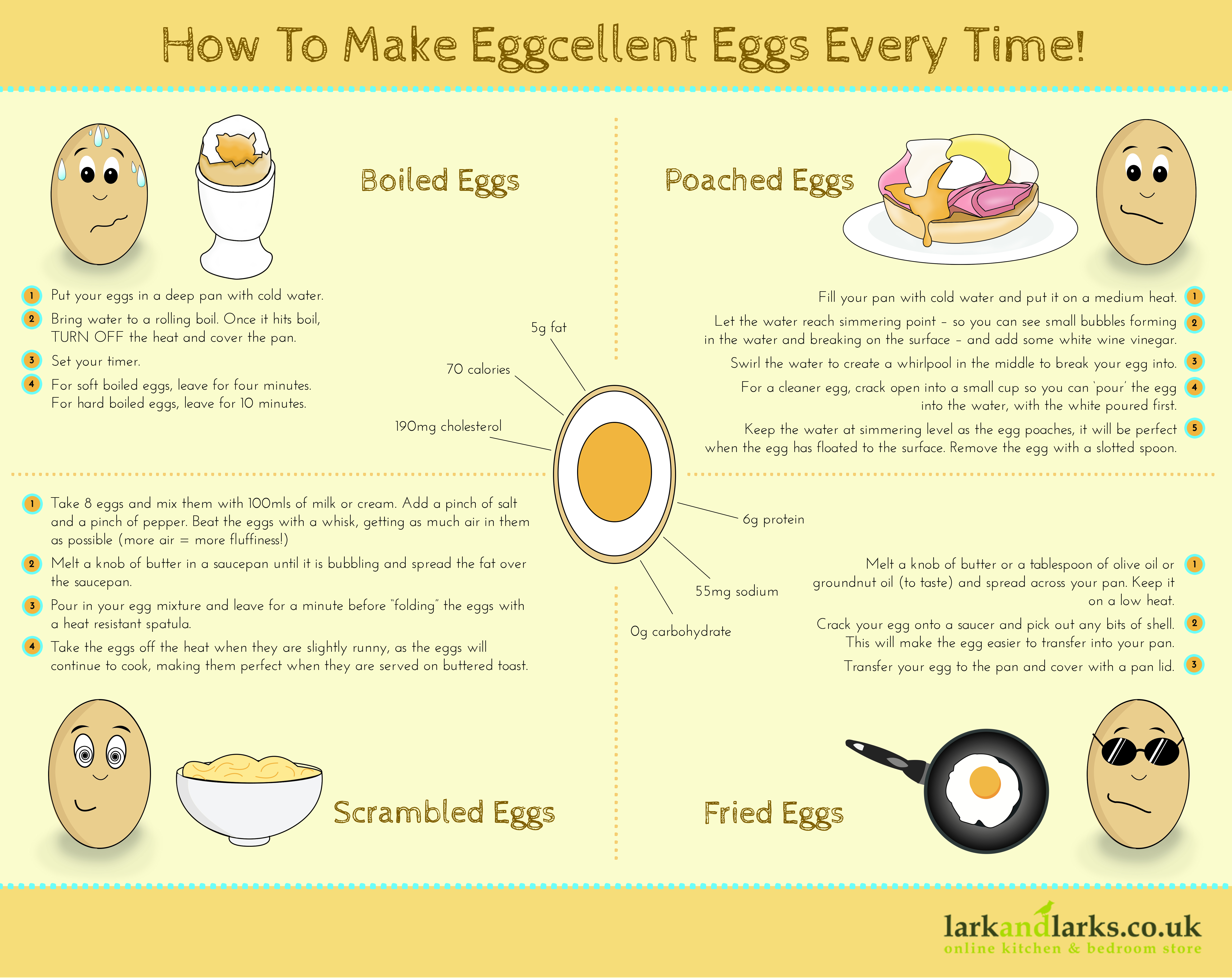 Lark and Larks Eggs Infographic
