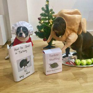 Christmas themed dog costumes